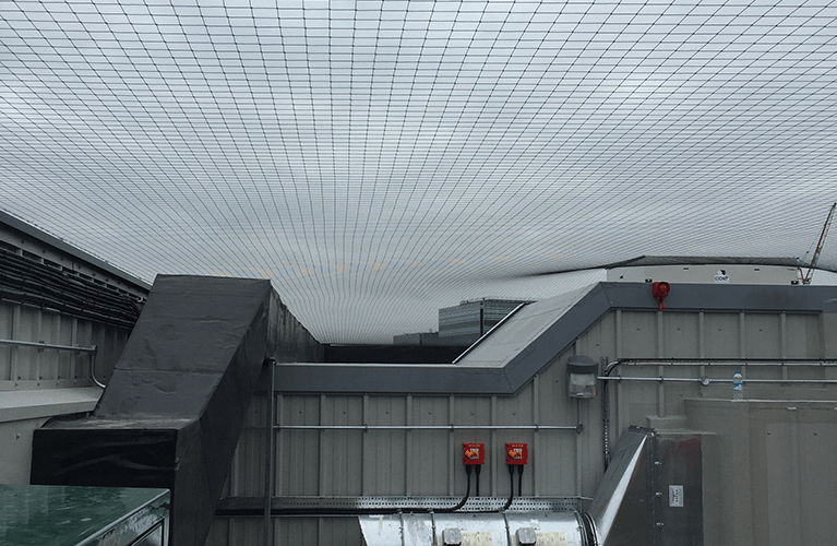 Professional bird netting installed by Protex Pest Control Services in London