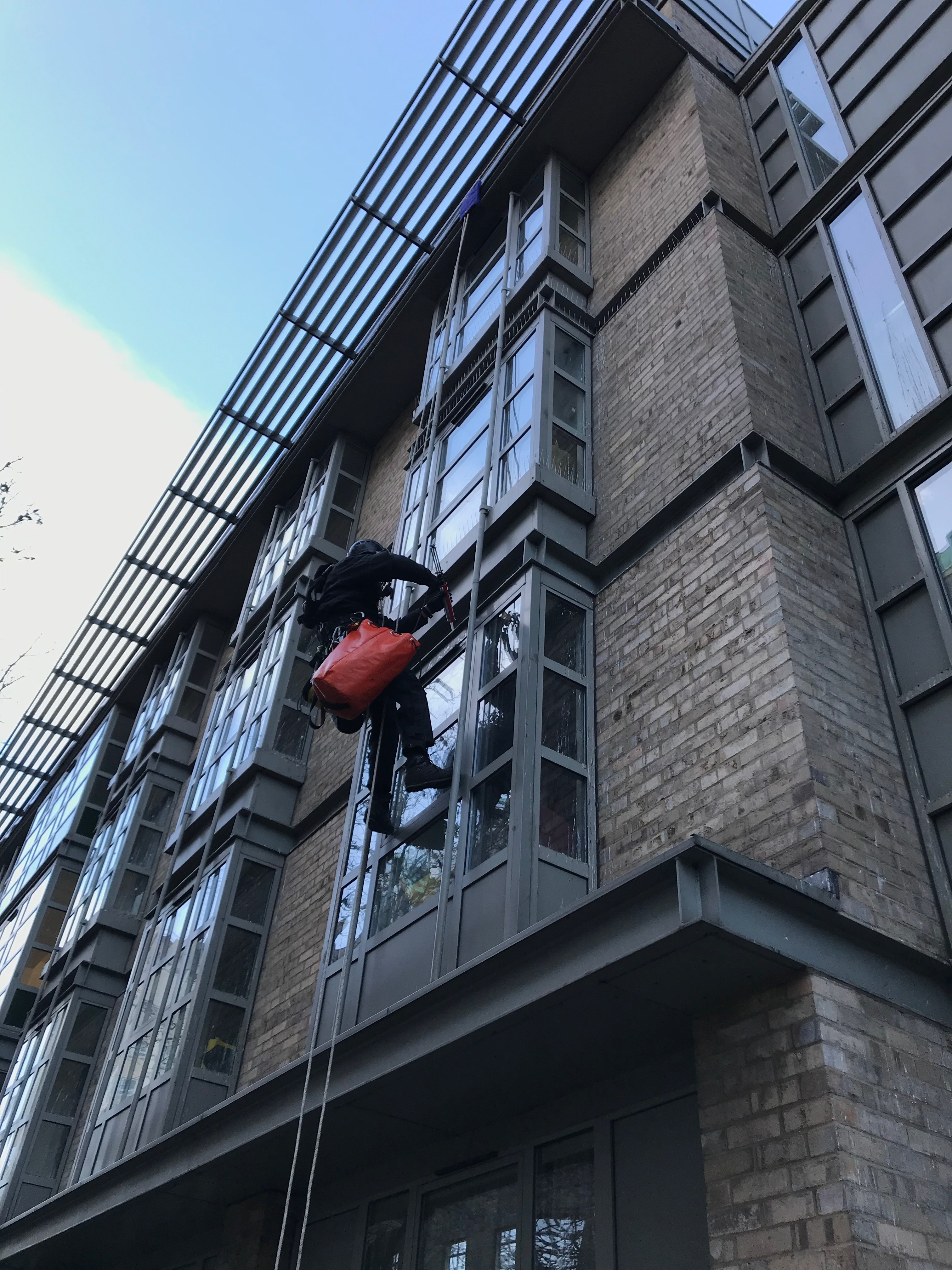 Rope access bird control services London