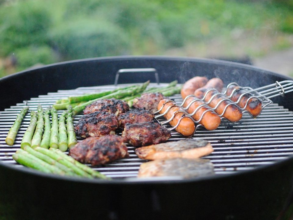 Pests at the BBQ by Protex Pest Control Services